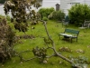 TWEED, On. (06/09/11) A backyard in Tweed is covered in debris after Wednesday night's storm. Photo by Ashliegh Gehl.