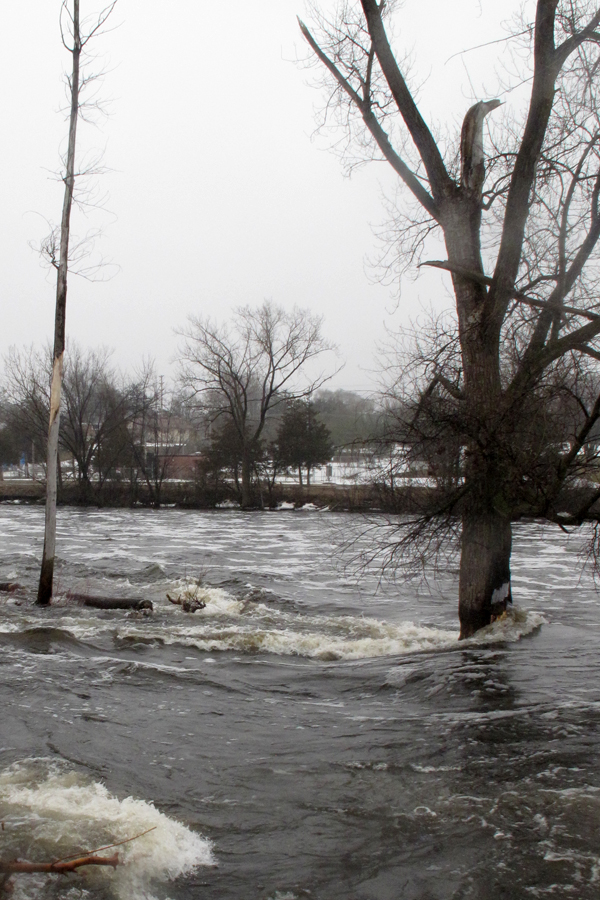 The high waters of the Moira River during spring time. (File Photo)