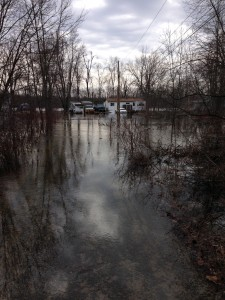 The water level of the Moira river continues to rise. Photo by Riley Maracle.