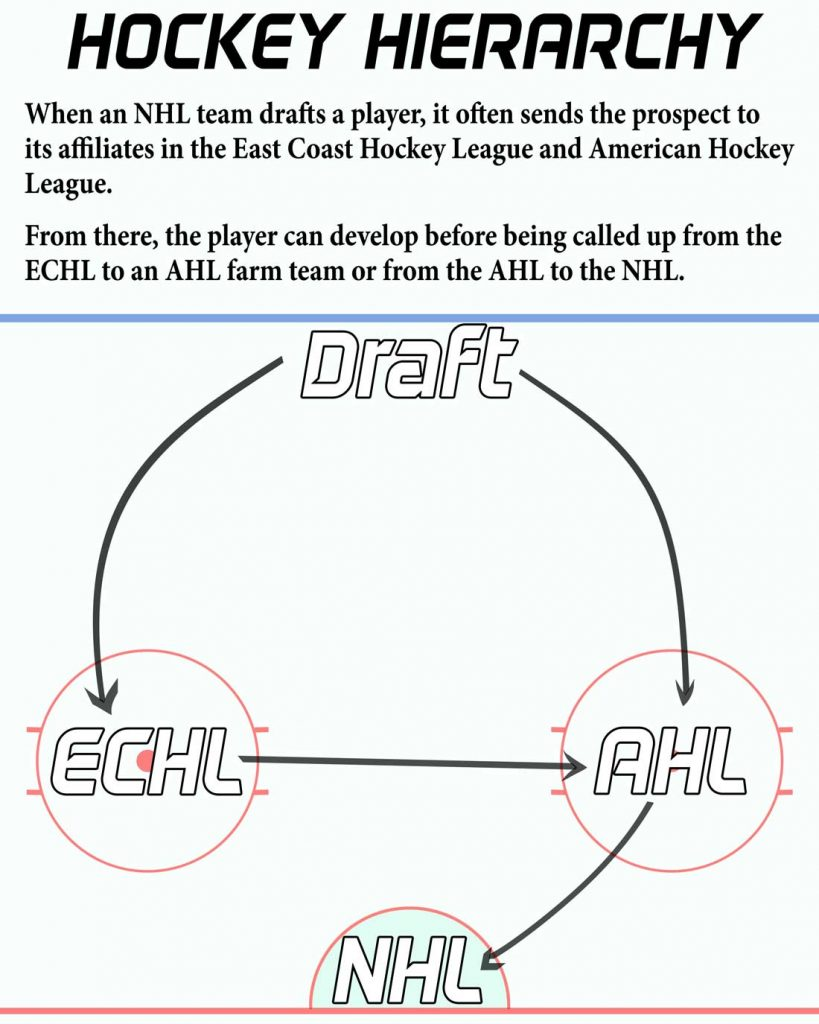 A hockey infographic on the relationship between the NHL, AHL and ECHL.