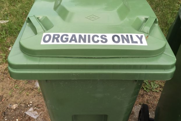 Only food scraps and other organic items are supposed to be put into the green bins. Photo by Stephanie Clue, QNet News